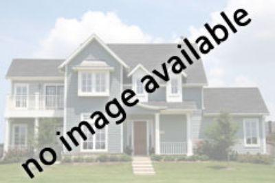 33 Overlook Trail Morris Plains, NJ 07950 - Image